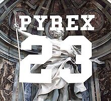 pyrex 23 by g66by