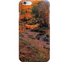 Winding Brook iPhone Case/Skin