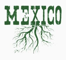 Mexico Roots Kids Clothes