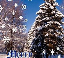 Merry Christmas- a collaboration with Reflector by cherylc1