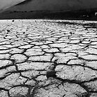 Playa and Cinder Cone in Mono  by Justin Mair