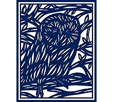 Lamborne Owl Blue White Photographic Print