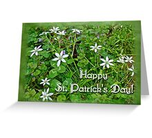 HAPPY ST PATRICK'S DAY - Star of Bethlehem Wildflowers Greeting Card