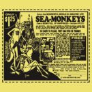 Sea Monkeys by mobii