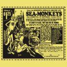 Sea Monkeys by mobii