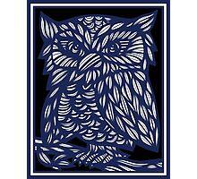 Brezina Owl Blue White Black Photographic Print