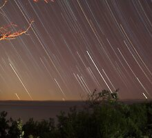 Trails of Orion Rising by Mike Salway