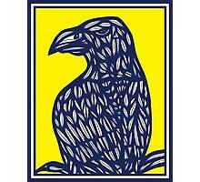 Mustin Eagle Hawk Yellow Blue Photographic Print