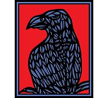 Lotts Eagle Hawk Red Blue Photographic Print
