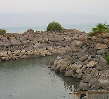 Tiberias stone at Lake Kinneret by Sarah  Levinson