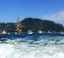 Tall Ships 11 (in front of Portofino) by Monica Di Carlo