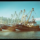 Brixham Trawlerled  by Rob Hawkins