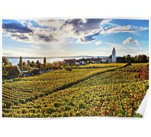 Sunset over Grape Orchards near Hagnau - Lake Constance Poster