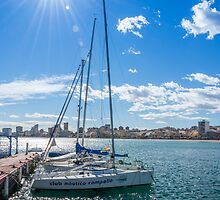 El Campello from the Marina by Ralph Goldsmith