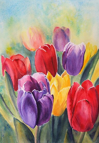 Tulip Rainbow by Ruth S Harris