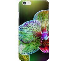 Opulent Orchids iPhone Case/Skin