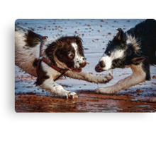 Puppy play time Canvas Print
