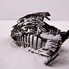 Boat Skeleton by Ian Benninghaus