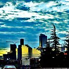 Seattle Sunrise Commute 4 by Tamara Valjean