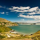 Bay at Dunedin by peterwey