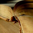 Like An Open Book by HoltPhotography
