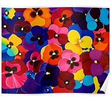 Blaneket of Pansies Poster