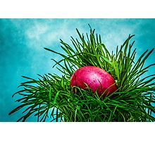 Red Easter egg in the grass Photographic Print