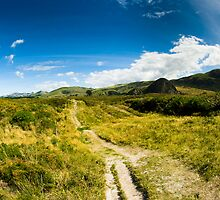 Rural scenery at Dunedin by peterwey