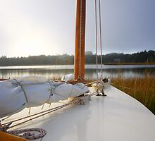 Sailing Anarchy by capecodart