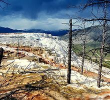 Mammoth Hot Springs by Bob Moore