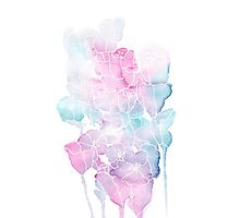 Pink and Blue Watercolor Flowers Photographic Print