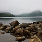 Mist over Jordan Pond by Denise Goldberg