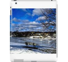 Winter Beauty iPad Case/Skin