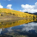 Autumn Reflection by susannamike