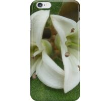 Correa alba iPhone Case/Skin