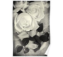 Roses in Black and White Poster