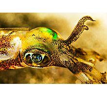 Squid Eye Photographic Print