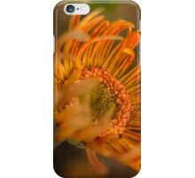 Gerbera emerging iPhone Case/Skin