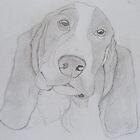 Bassett hound by JayEeBee