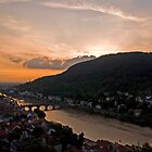 Heidelberg at dusk by rosiczka