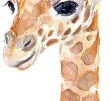 Giraffe Watercolor Baby Animal Sticker