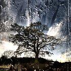The Last Tree by Azza
