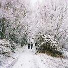 Snowy Walk 2 by rosie320d