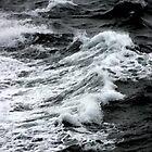 WAVE #14 by Karo / Caroline Evans (Caux-Evans)