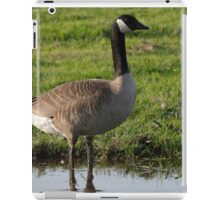 Canadian Goose iPad Case/Skin