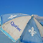 Umbrella Of Québec by terrebo