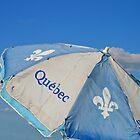 Umbrella Of Québec by terrebo