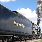 Nickel Plate Road #765 by Vonnie Murfin