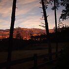 My Backyard by Lolabud