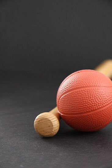 Sports Fan by Judi FitzPatrick